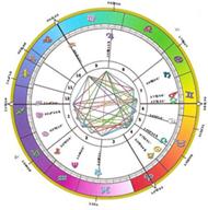 Chart zodiac pie Reading Your